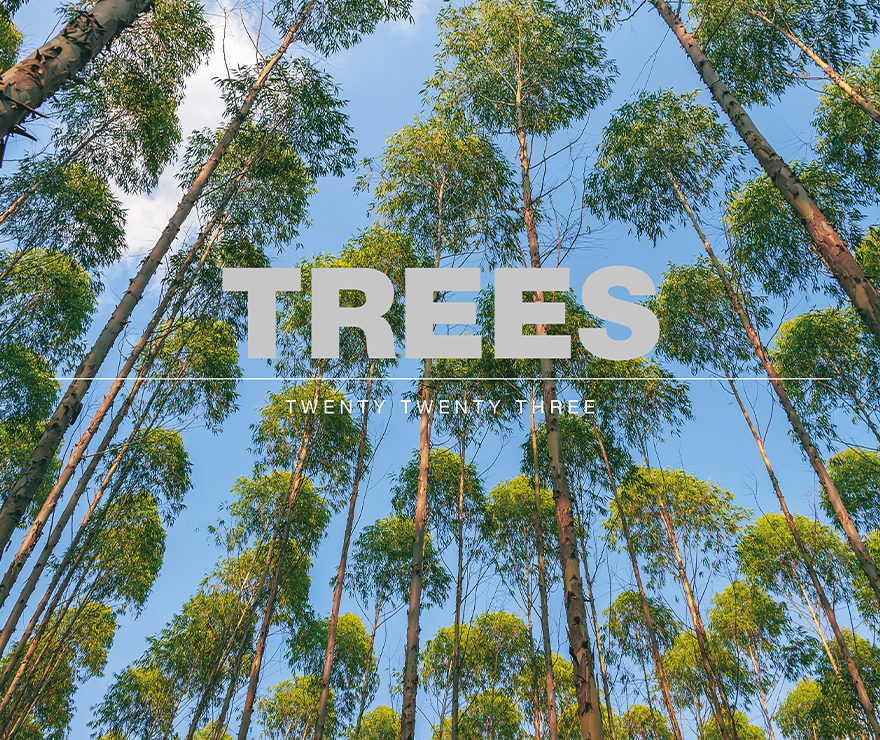 Landscapes With Trees Calendar